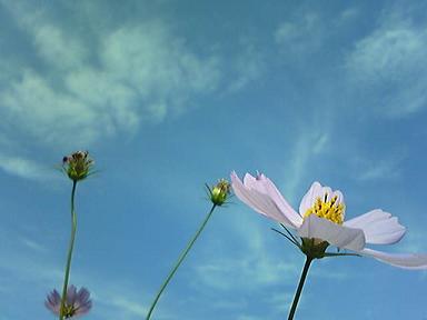 blog-photo-1223026904k1.jpg