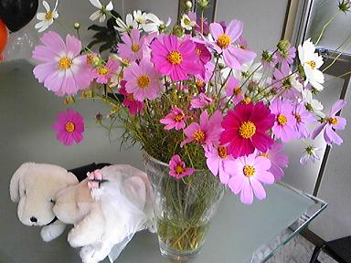 blog-photo-1224426862k1.jpg