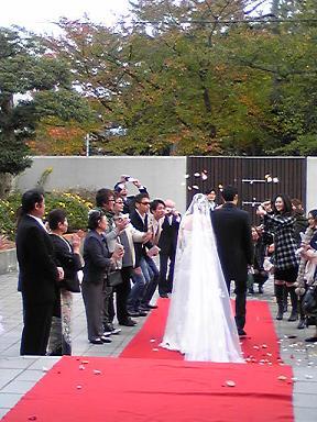 blog-photo-1226390142k10.jpg