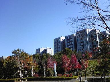 blog-photo-1226564551b1.jpg