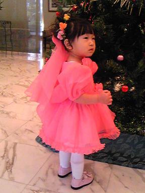 blog-photo-1228650545y5.jpg