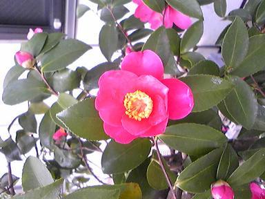 blog-photo-1230337033t1.jpg