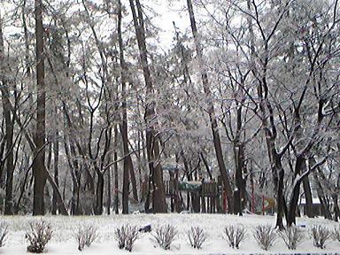 blog-photo-1232074050r3.jpg