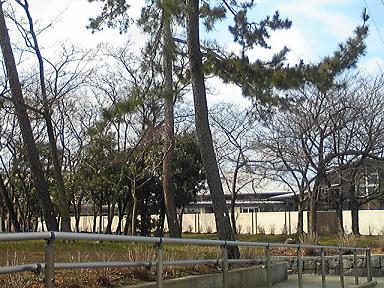 blog-photo-1233898851k3.jpg