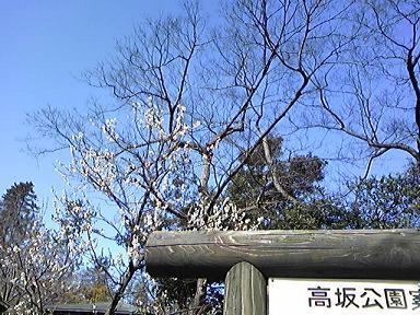 blog-photo-1236000947u4.jpg
