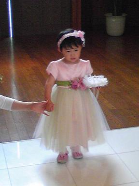 blog-photo-1241506071r5.jpg