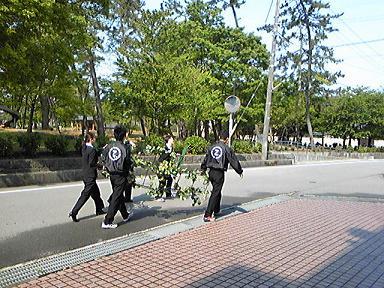 blog-photo-1242446925k1.jpg