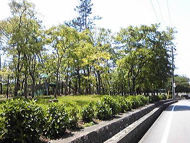 blog-photo-1242732179a4.jpg