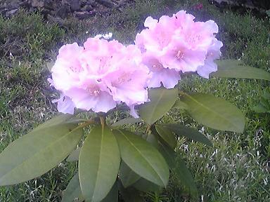 blog-photo-1242896872s11.jpg