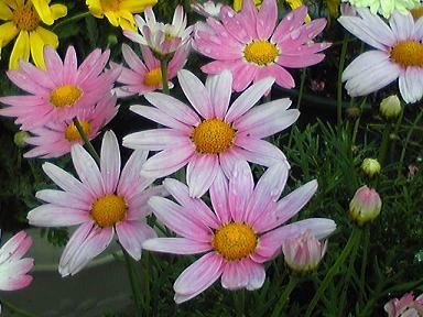 blog-photo-1242896956y2.jpg