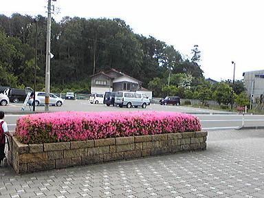 blog-photo-1244440472a3.jpg