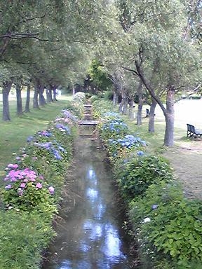 blog-photo-1245396201k1.jpg