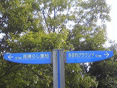 blog-photo-1245462106m1.jpg
