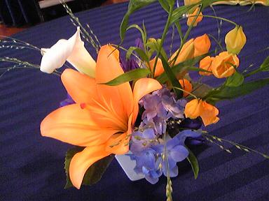 blog-photo-1246518893r3.jpg