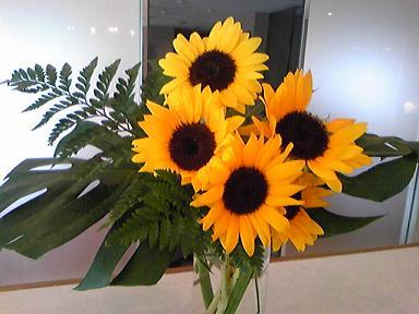 blog-photo-1246518893r4.jpg