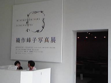 blog-photo-1247198797o2.jpg