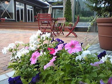 blog-photo-1249432406n1.jpg