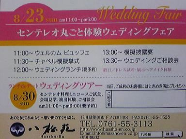 blog-photo-1250573243f2.jpg