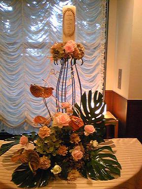 blog-photo-1251160786y5.jpg