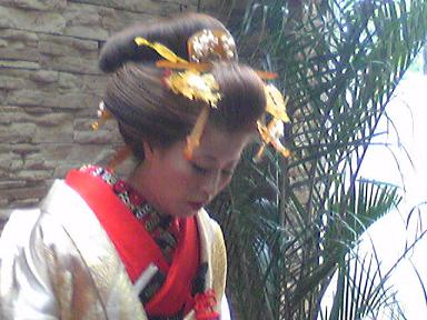 blog-photo-1251861426m5.jpg