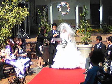 blog-photo-1254209626j7.jpg