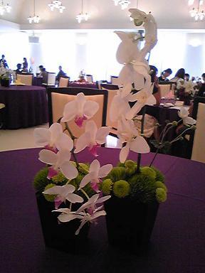 blog-photo-1255332437b14.jpg