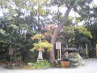 blog-photo-1257054651s2.jpg