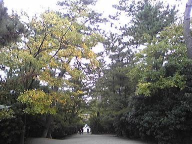 blog-photo-1257054651s3.jpg