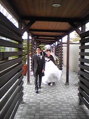 blog-photo-1258443050y3.jpg