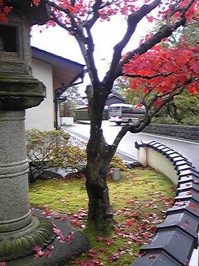 blog-photo-1259374224k8.jpg