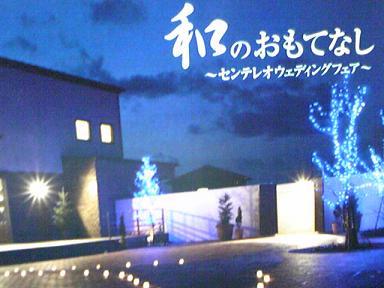 blog-photo-1261890133w4.jpg