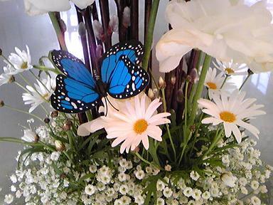 blog-photo-1263808381h1.jpg
