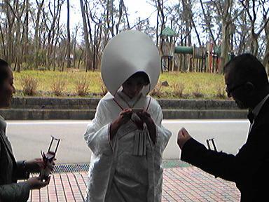 blog-photo-1265521622m33.jpg