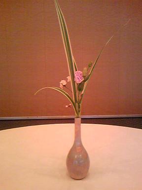 blog-photo-1265864338h3.jpg