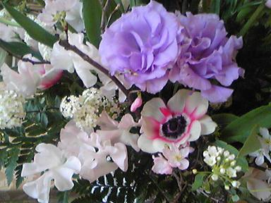 blog-photo-1267842153f5.jpg