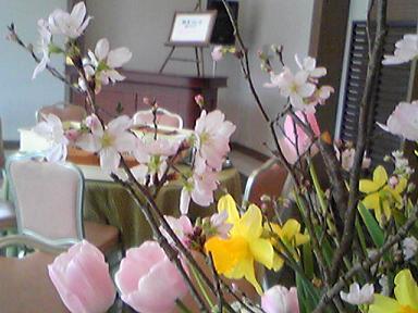 blog-photo-1267842255f6.jpg