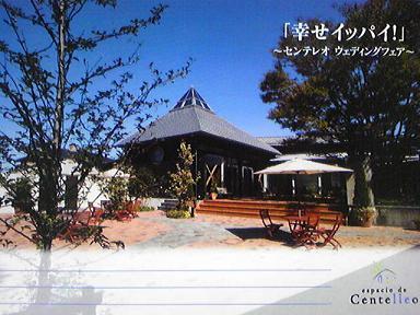 blog-photo-1268454316f1.jpg