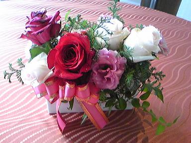 blog-photo-1268909856s1.jpg