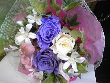 blog-photo-1270530734a2.jpg