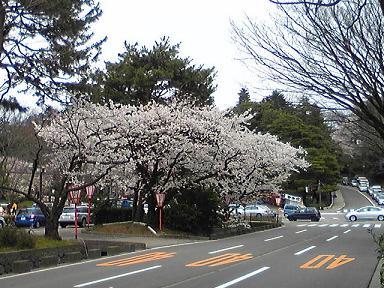 blog-photo-1270701934s1.jpg