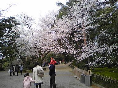 blog-photo-1270701934s3.jpg