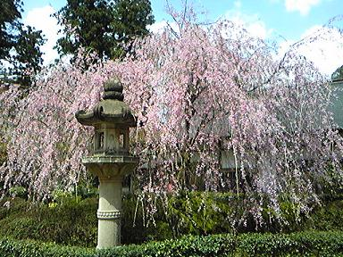 blog-photo-1271466333n2.jpg