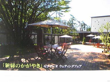 blog-photo-1271735741f1.jpg