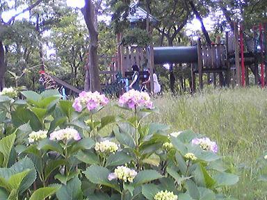 blog-photo-1277010531a1.jpg