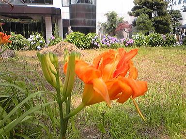 blog-photo-1278582628h4.jpg