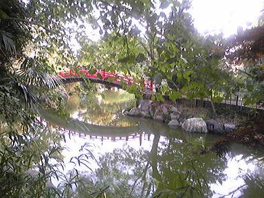 blog-photo-1283329677p2.jpg