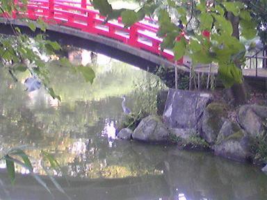 blog-photo-1283329677p3.jpg