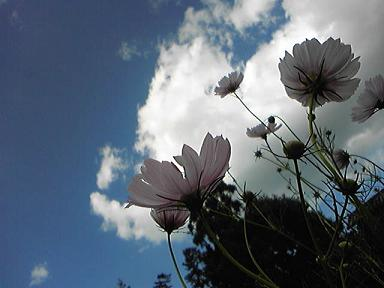 blog-photo-1285467472t3.jpg