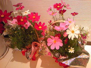 blog-photo-1287385977k3.jpg