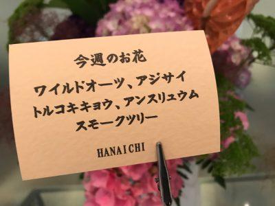 hassho-en202006112